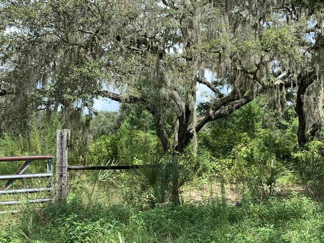 0 Sisco Rd, Satsuma, FL 32189 (MLS #1068320) :: EXIT Real Estate Gallery