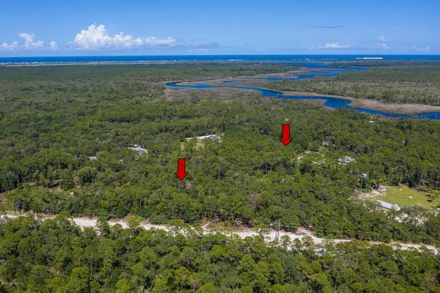770 Faver Dykes Rd, St Augustine, FL 32086 (MLS #1068694) :: Memory Hopkins Real Estate