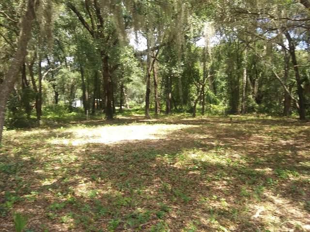231 Little Orange Lake Dr, Hawthorne, FL 32640 (MLS #1073095) :: Berkshire Hathaway HomeServices Chaplin Williams Realty