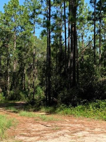 238 Rainbow Dr, Hawthorne, FL 32640 (MLS #1073744) :: Memory Hopkins Real Estate