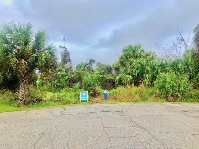 12 Laurel Dr, Palm Coast, FL 32137 (MLS #1076525) :: 97Park