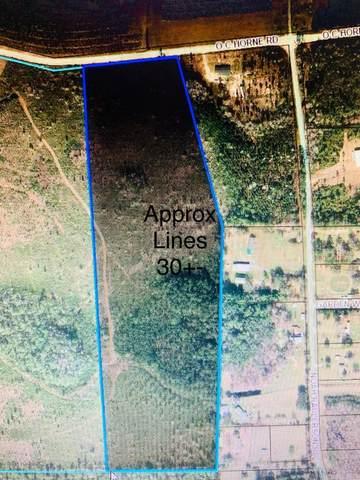 0 O C Horne Rd, Sanderson, FL 32087 (MLS #1077040) :: CrossView Realty