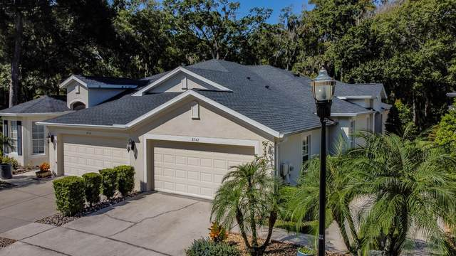 8542 Acorn Ridge Ct, Tampa, FL 33625 (MLS #1078665) :: The DJ & Lindsey Team