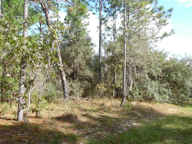 0 Lake Serena Rd, Melrose, FL 32666 (MLS #1080307) :: Memory Hopkins Real Estate