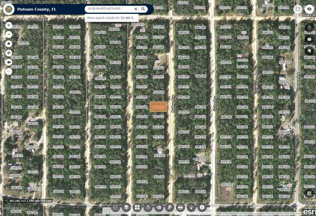 00000 Neilsen Ave, Interlachen, FL 32148 (MLS #1080711) :: The Hanley Home Team