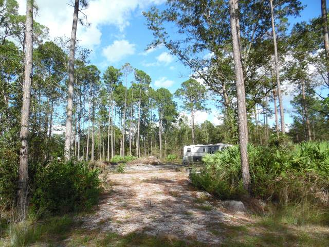 0 Mcallister Rd, Middleburg, FL 32068 (MLS #1082974) :: The Hanley Home Team