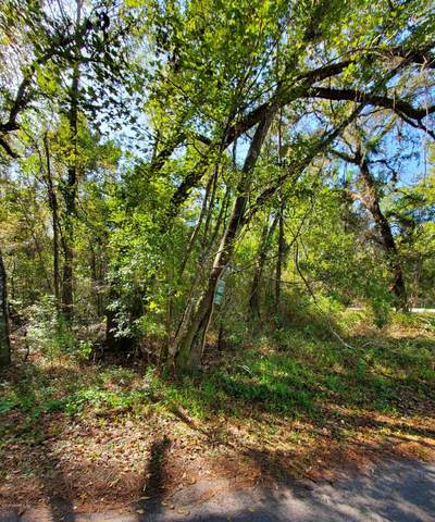0 Scenic Dr, Middleburg, FL 32068 (MLS #1083326) :: EXIT Inspired Real Estate