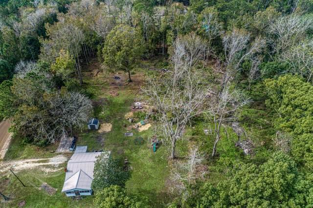 1736 Baxley Rd, Middleburg, FL 32068 (MLS #1085091) :: The Hanley Home Team