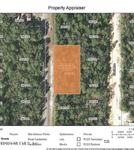 000 Theresa Ave, Interlachen, FL 32148 (MLS #1091525) :: The Newcomer Group
