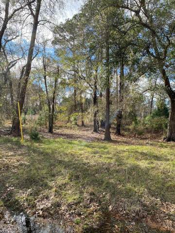 0 W Lakeshore Dr W, Starke, FL 32091 (MLS #1094837) :: Military Realty
