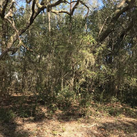 000 Michigan St W, Florahome, FL 32140 (MLS #1104420) :: Olde Florida Realty Group