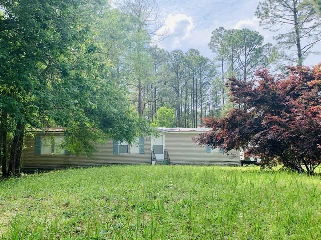 2166 Pine Tree Ln, Middleburg, FL 32068 (MLS #1104932) :: Olde Florida Realty Group