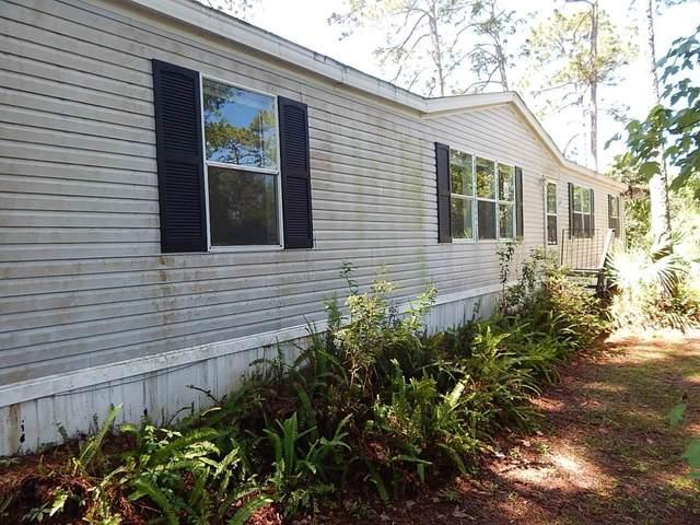 199 Palmway Dr, Satsuma, FL 32189 (MLS #1105920) :: The DJ & Lindsey Team