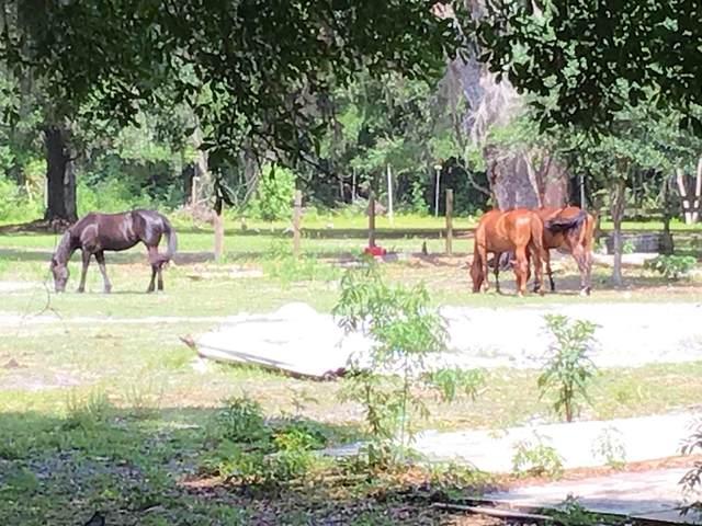 5735 Monroe Smith Rd S, Jacksonville, FL 32222 (MLS #1107618) :: The Hanley Home Team