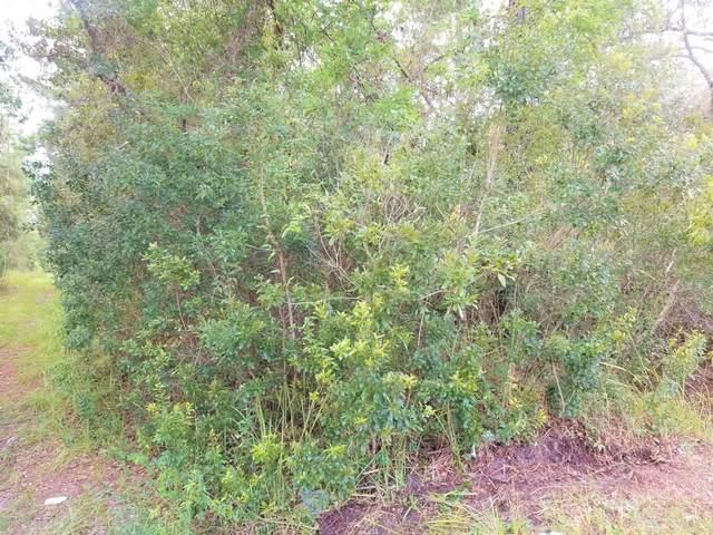 226 Pheasant Rd, Satsuma, FL 32189 (MLS #1131185) :: Ponte Vedra Club Realty