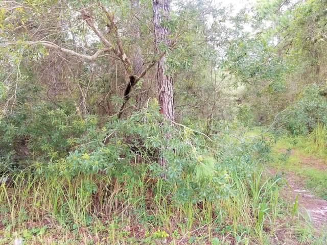 224 Pheasant Rd, Satsuma, FL 32189 (MLS #1131750) :: CrossView Realty