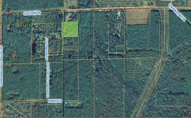 0 Carraway Church Rd, Palatka, FL 32177 (MLS #739940) :: The Hanley Home Team