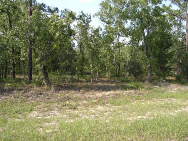 0000 Ridge Rd, Melrose, FL 32666 (MLS #761410) :: CrossView Realty