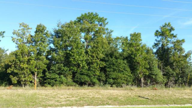 0 Sr 21, Keystone Heights, FL 32656 (MLS #791474) :: Bridge City Real Estate Co.