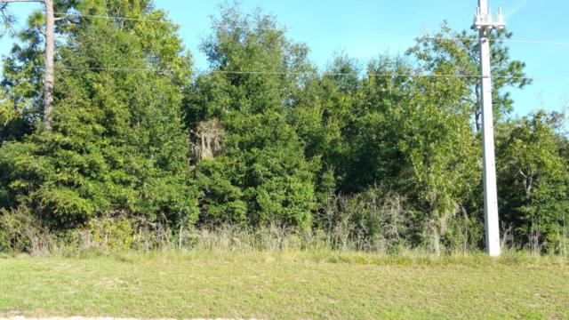 0 Sr 21, Keystone Heights, FL 32656 (MLS #791559) :: Bridge City Real Estate Co.