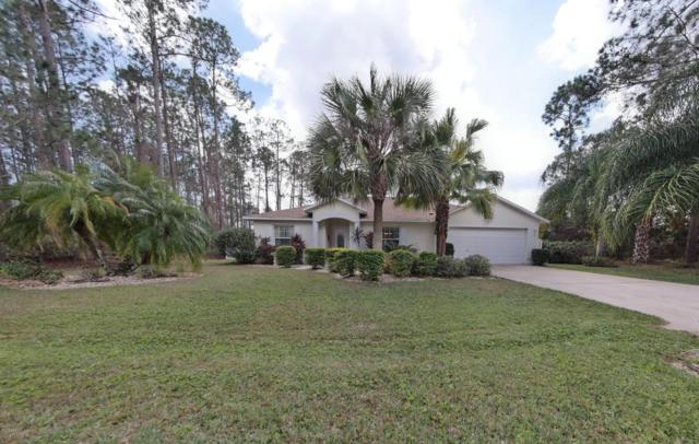 19 Eric Dr, Palm Coast, FL 32164 (MLS #870149) :: EXIT Real Estate Gallery