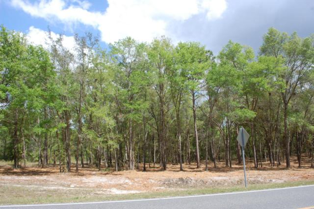 LOT # 1 21B /  SE 8TH Ave, Keystone Heights, FL 32656 (MLS #873602) :: EXIT Real Estate Gallery