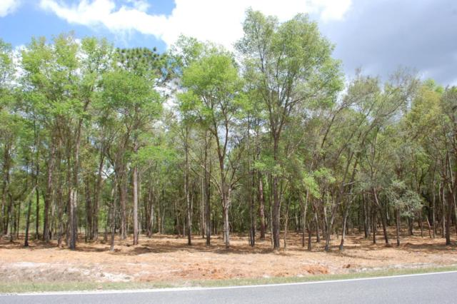 LOT # 5 SE 21B / 8TH Ave, Keystone Heights, FL 32656 (MLS #873613) :: EXIT Real Estate Gallery