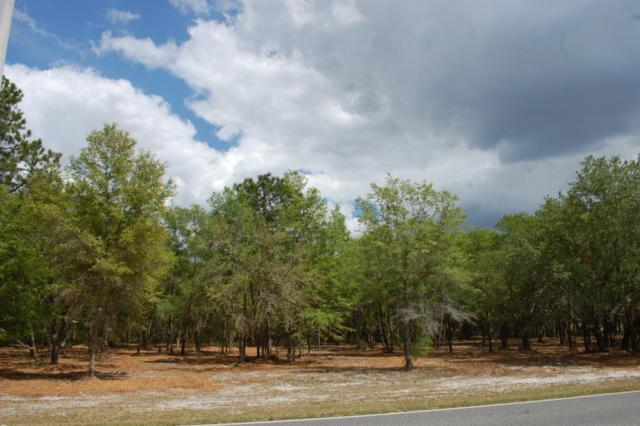LOT # 6 SE 21B / 8TH Ave, Keystone Heights, FL 32656 (MLS #873614) :: EXIT Real Estate Gallery