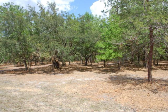 LOT # 7 SE 21B / 8TH Ave, Keystone Heights, FL 32656 (MLS #873615) :: EXIT Real Estate Gallery