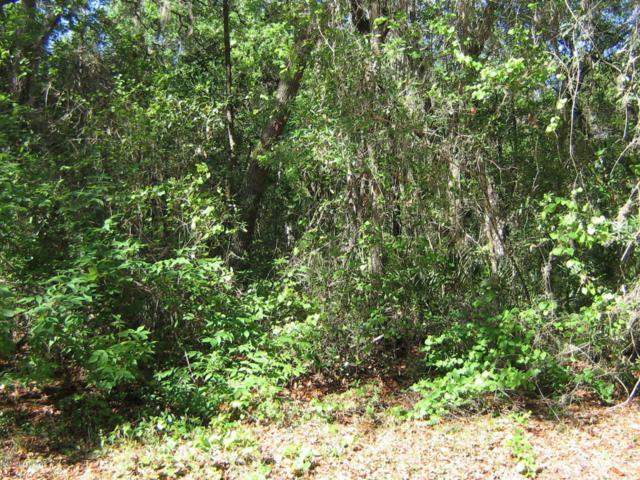 5019 Heskett Ln, Keystone Heights, FL 32656 (MLS #875435) :: The Hanley Home Team