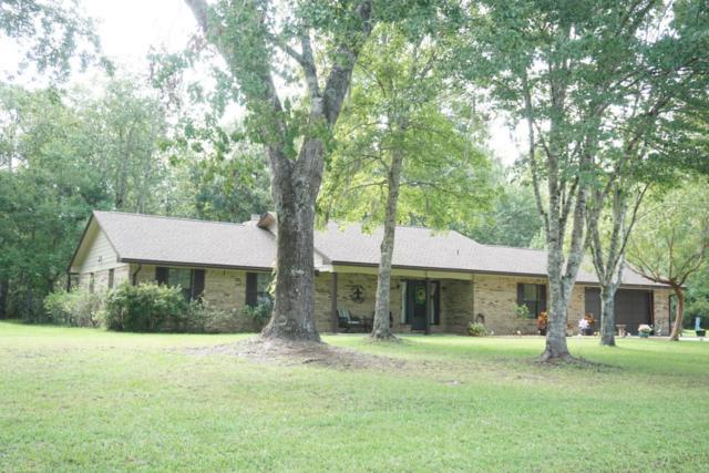 567 Wesley Rd, GREEN COVE SPRINGS, FL 32043 (MLS #896571) :: EXIT Real Estate Gallery
