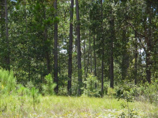 LOT 16 Bent Twig Rd, Middleburg, FL 32068 (MLS #896692) :: EXIT Real Estate Gallery