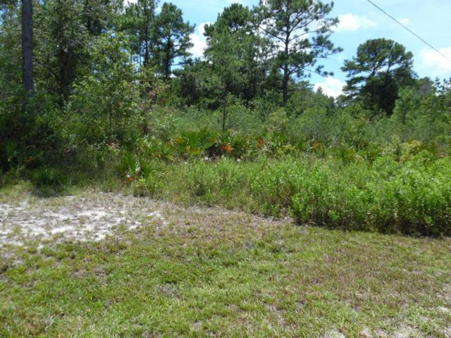 LOT 19 Candlewood Ct, Middleburg, FL 32068 (MLS #896701) :: EXIT Real Estate Gallery
