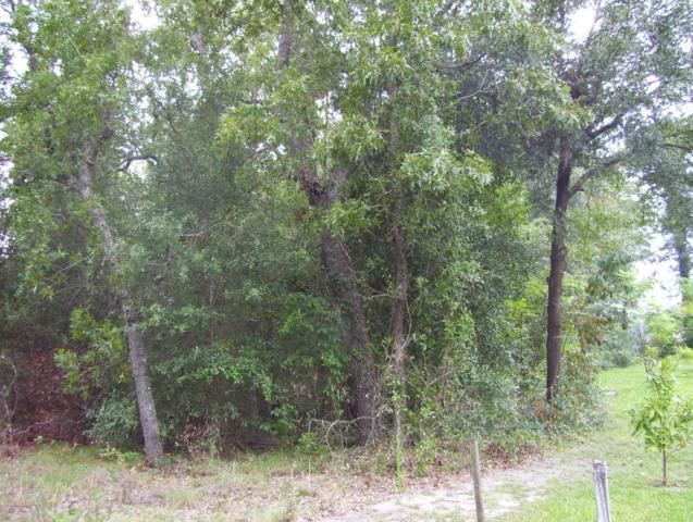 000 SE 1ST Ave, Keystone Heights, FL 32656 (MLS #901013) :: EXIT Real Estate Gallery
