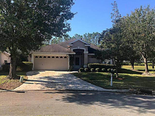 409 Chicory Pl, St Johns, FL 32259 (MLS #911195) :: EXIT Real Estate Gallery