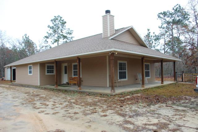136 Melrose Landing, Hawthorne, FL 32640 (MLS #916177) :: EXIT Real Estate Gallery