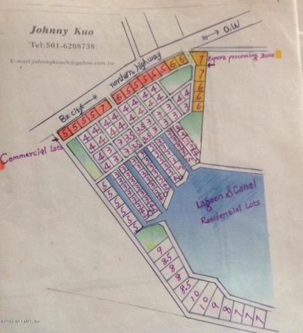 46 Mile Philip Goldson Hwy, BELIZE, FL 11111 (MLS #916201) :: EXIT Real Estate Gallery
