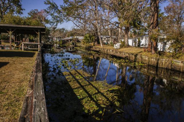 104 Magnolia Trl, Satsuma, FL 32189 (MLS #918589) :: EXIT Real Estate Gallery