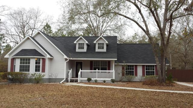 5176 Country Estates Rd, Middleburg, FL 32068 (MLS #919482) :: EXIT Real Estate Gallery
