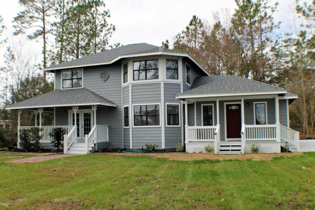 15 Cinnamon St, Middleburg, FL 32068 (MLS #919536) :: EXIT Real Estate Gallery
