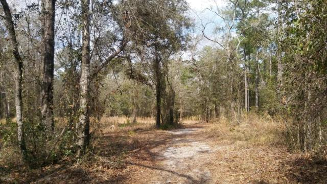1626 Hereford Rd, Middleburg, FL 32068 (MLS #919876) :: EXIT Real Estate Gallery