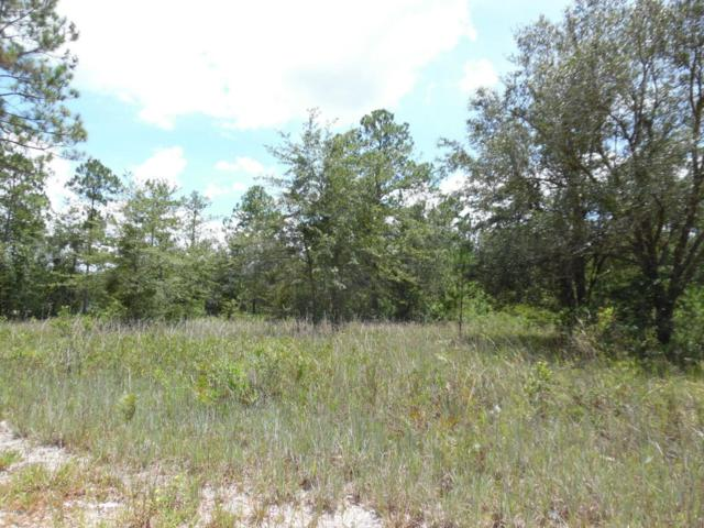 4999 Wedgefield Ct, Middleburg, FL 32068 (MLS #920044) :: EXIT Real Estate Gallery