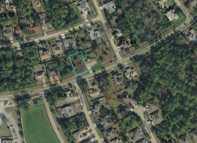 326 Parkview Dr, Palm Coast, FL 32164 (MLS #920422) :: EXIT Real Estate Gallery