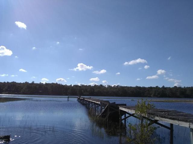 113 Sandpiper Dr, Hawthorne, FL 32640 (MLS #921768) :: Florida Homes Realty & Mortgage