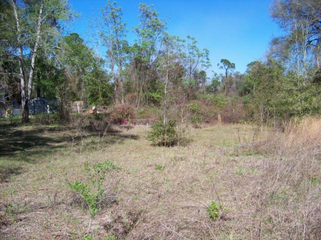 157 Silver Lake Dr, Interlachen, FL 32148 (MLS #923995) :: 97Park