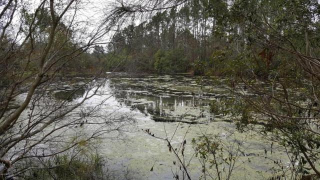 0 Bell Lagoon Dr, Yulee, FL 32097 (MLS #925518) :: Keller Williams Atlantic Partners