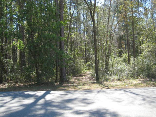4687 Gopher St, Middleburg, FL 32068 (MLS #926223) :: St. Augustine Realty