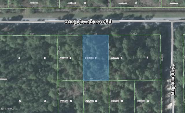 227 Georgetown Denver Rd, Georgetown, FL 32139 (MLS #927831) :: The Hanley Home Team