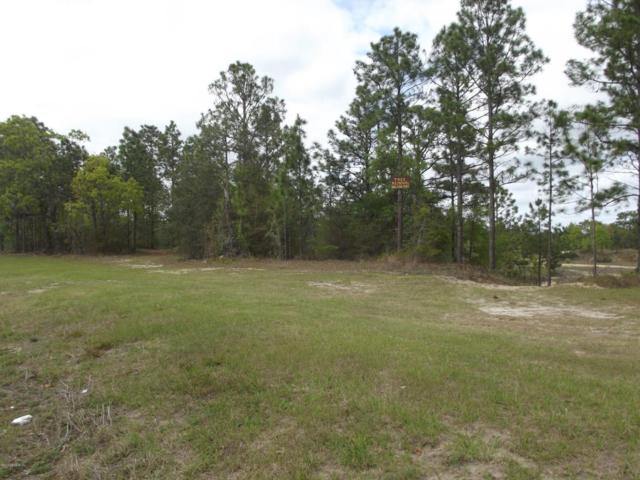 0 County Rd 315, Interlachen, FL 32148 (MLS #928552) :: Sieva Realty