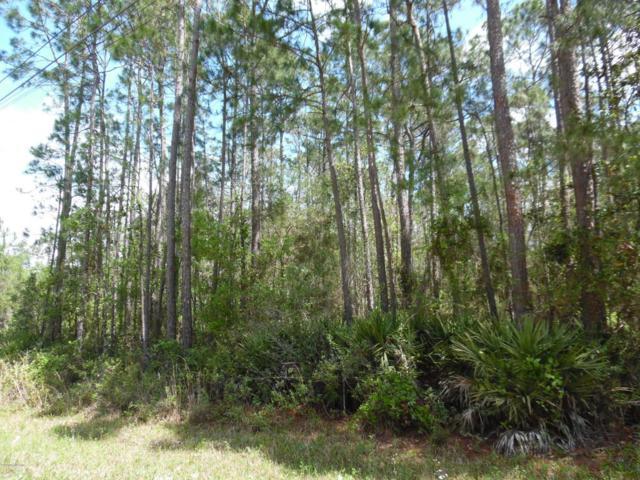 2535 Zunnia St, Middleburg, FL 32068 (MLS #929905) :: Sieva Realty